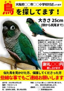 シェワゾー迷子鳥チラシサンプル
